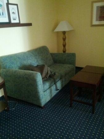 SpringHill Suites Charlotte Lake Norman/Mooresville: living room