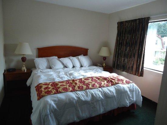 Magnuson Hotel Niagara Falls: Room