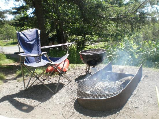 Big Meadows Campground: campsite accomodations