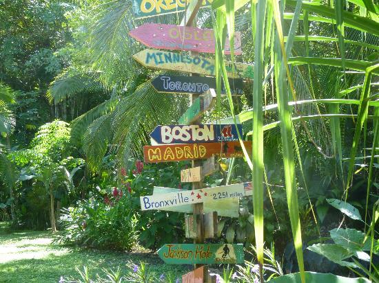 The Toucan Stay Inn: Détail du jardin
