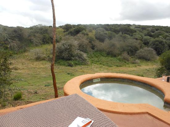 Amakhala Safari Lodge: Private Plunge pool