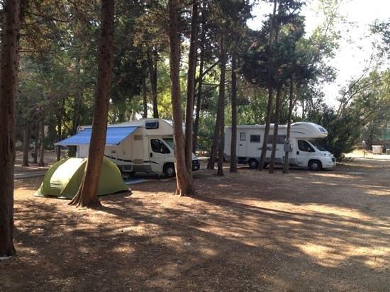 Idrusa Camping : interno campeggio
