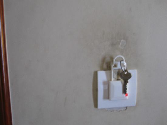 Hotel Pradeep: Muestra de pared