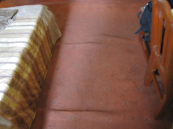 Hotel Pradeep: Moqueta...para no ir descalzo