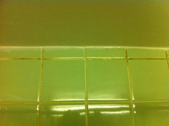Howard Johnson Inn and Suites Toronto East : mold on the bathroom tiles