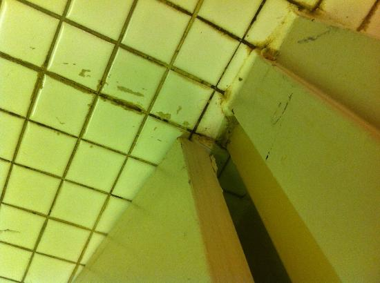 Howard Johnson Inn and Suites Toronto East: mold and dirt
