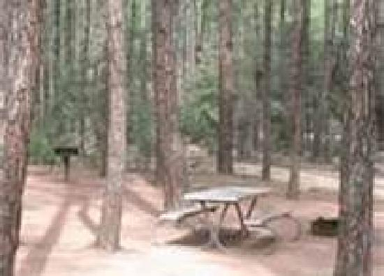 Fort Tuthill County Campground