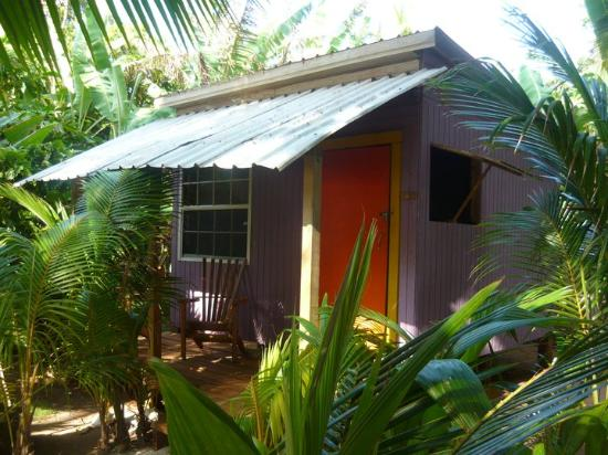 Casa Iguana / White Hole Tour Bild