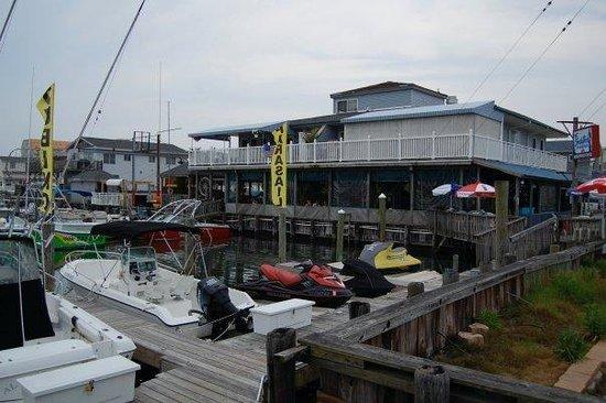 South Dock Cafe & Marina