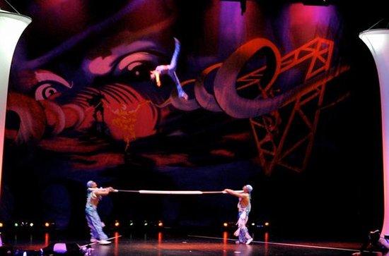 Sandou Theatrical Circus School Photo