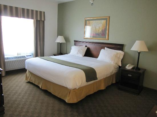 Holiday Inn Express Hotel & Suites Elkins : King suite was spacious and SO comfortable!!!!