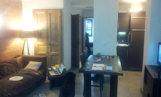 Lagrange Prestige Residence Les Fermes d'Emiguy : salon sejour coin cuisine
