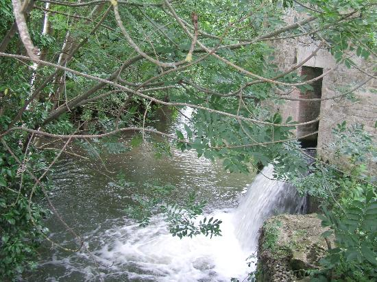 Stowford Mill Bed and Breakfast: Creek / swimming area at Manor Farm