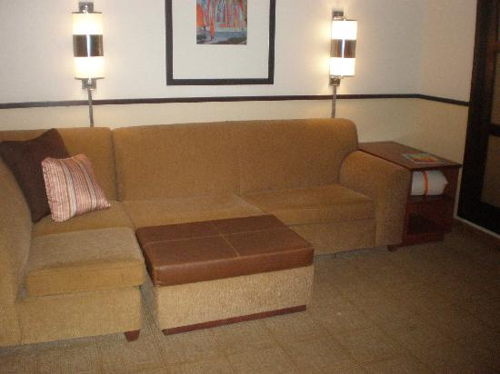 Hyatt Place Denver Airport: Sectional/pullout bed
