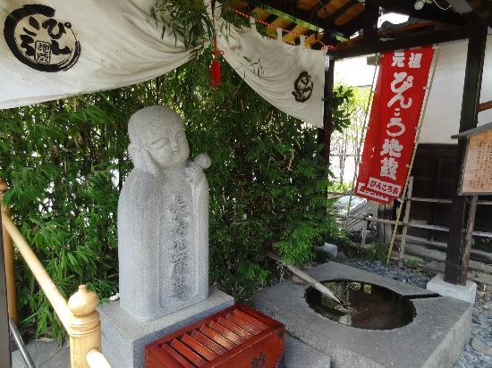Nozawa Narita-san Yakushiji Temple: ぴんころ地蔵