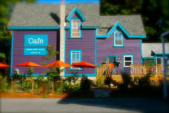 The Purple House Cafe : the cafe