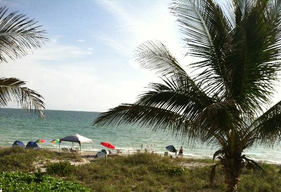 The Beach on Longboat Key: Our view with a room