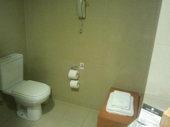 Sonesta Hotel Osorno: WC