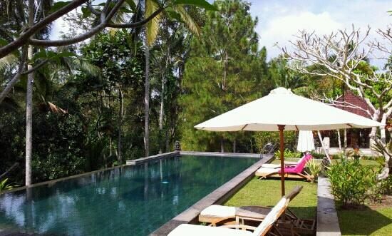 Suara Air Luxury Villa Ubud: piscina