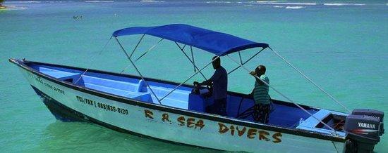 R & Sea Diver's Company