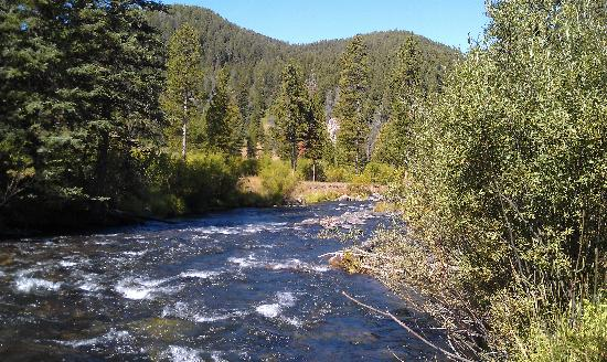 TroutChasers Lodge & Fly Fishing Outfitters: Troutchasers river view nearby