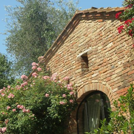 Villa Cicolina照片