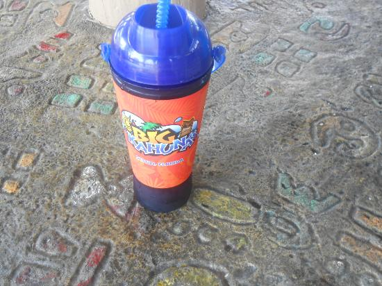 Big Kahuna's Water and Adventure Park: Sorry to say but the best part of the whole Big Kahuna