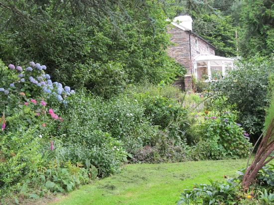 Firs Cottage Wales, enjoy the lovely gardens while you are here.