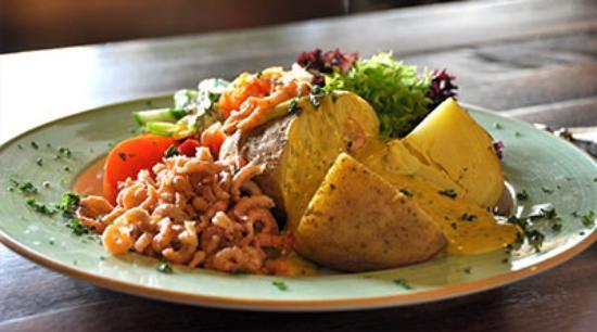 Kartoffelkafer Borkum Foto