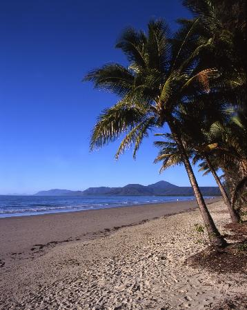 Freestyle Resort Port Douglas: Four Mile Beach