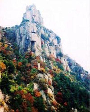淄博鲁山国家森林公园