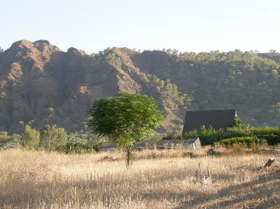 Sera Pansiyon: Sera'nın manzarası