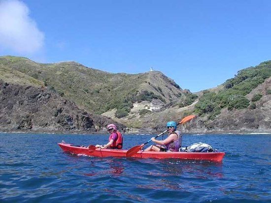 Cape Reinga Adventure Day Trips