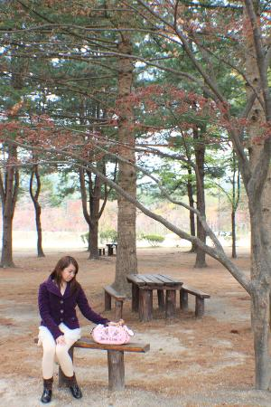 Nami Island: Squirrels were here