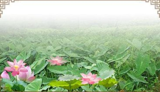 Xinhui Guifeng Mountain Photo