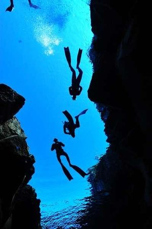 Freedive UK - Day Courses