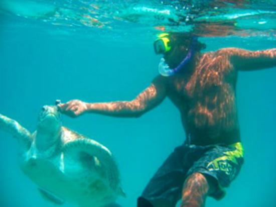 Foto de Barbados Excursions - Monkey Tours