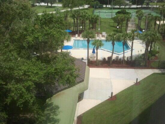 Holiday Inn - Orlando International Airport : View of the Pool Area from my 6th floor room. The grounds were immaculate. <3