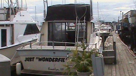 Just Wonderfil Sport Fishing