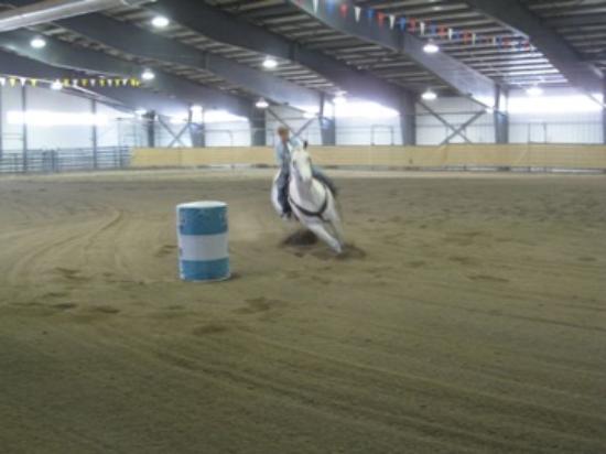Putnam Horsemanship Foto