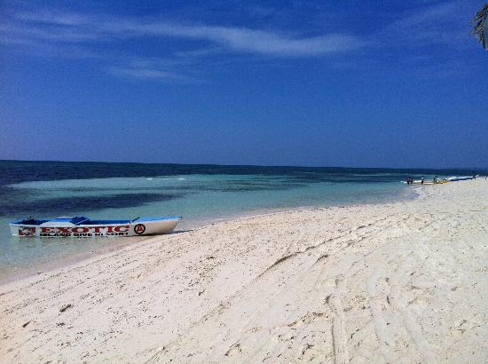 Malapascua Exotic Island Dive & Beach Resort: Spiaggia