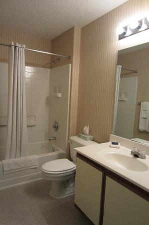 Extended Stay America - Omaha - West: Bathroom