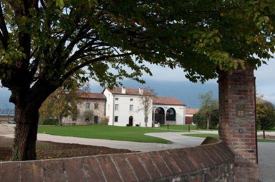 Schio, Italia: Ristorante da Beppino