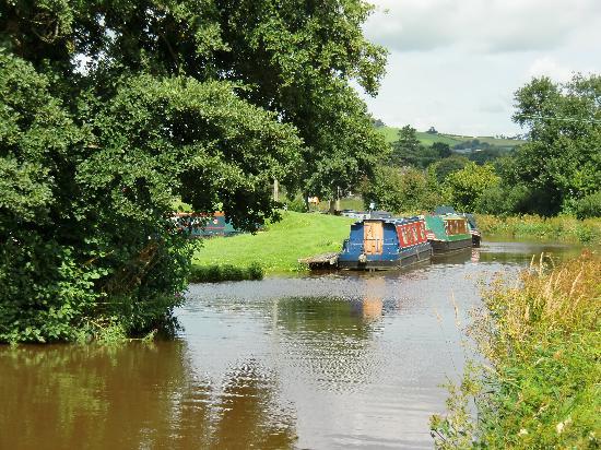Ty Newydd B&B: Canal