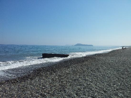 Futura Hotel: Local beach