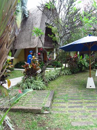 Puri Dalem Hotel: The hotel grounds