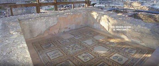 Montcaret Archaeological Site Photo
