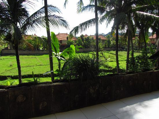 Panorama Hotel : View