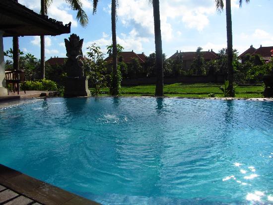 Panorama Hotel : Pool