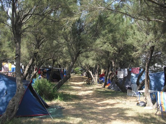 Vada, อิตาลี: camping